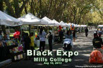 Shade Canopies For Vendor Expos & Street Fairs